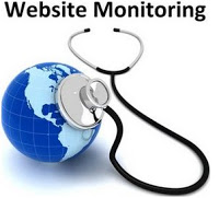 Need of website monitoring