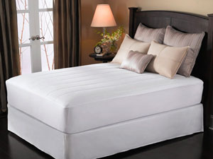 Sunbeam Electric Mattress Pad - Top 10!